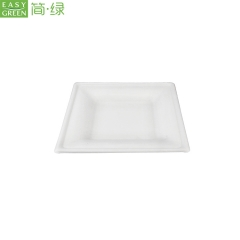Disposable White Sugarcane Dinner Plate Square