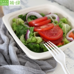 24oz Biodegradable Bagasse Bowls Disposable With Lid