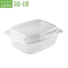 Disposable Plastic Fruit Food Box For Good Food Packaging