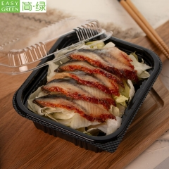J-8515 Disposable Plastic Sushi Bento Lunch Box Container For Kids