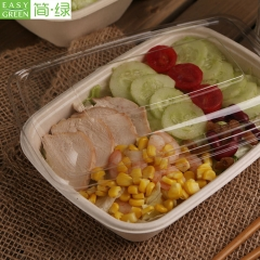 Disposable Bagasse/Sugarcane Food Container For Lunch Bneto