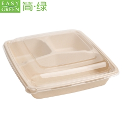 Easy Green Hot Sales Disposable Biodegradable Bagasse Lunch Trays With Lid